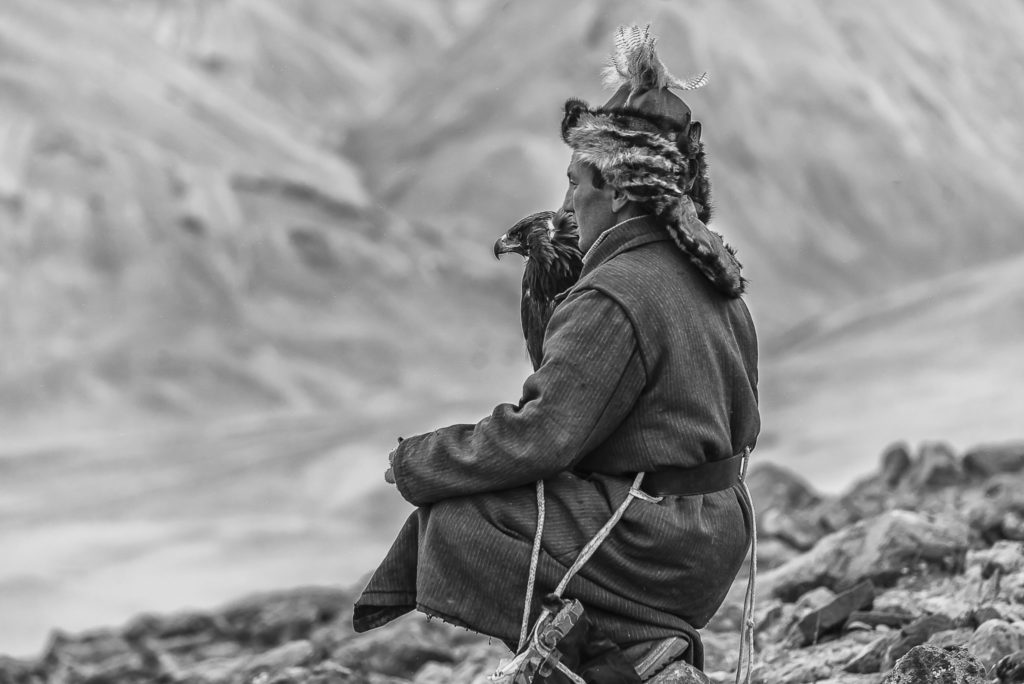 Waiting for the fox – Mongolia