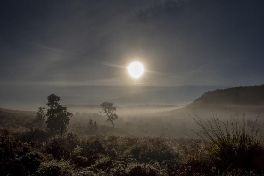 Morning in the sun – Sri Lanka