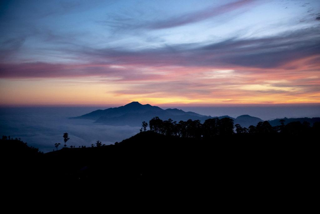 Colours in the morning – Sri Lanka