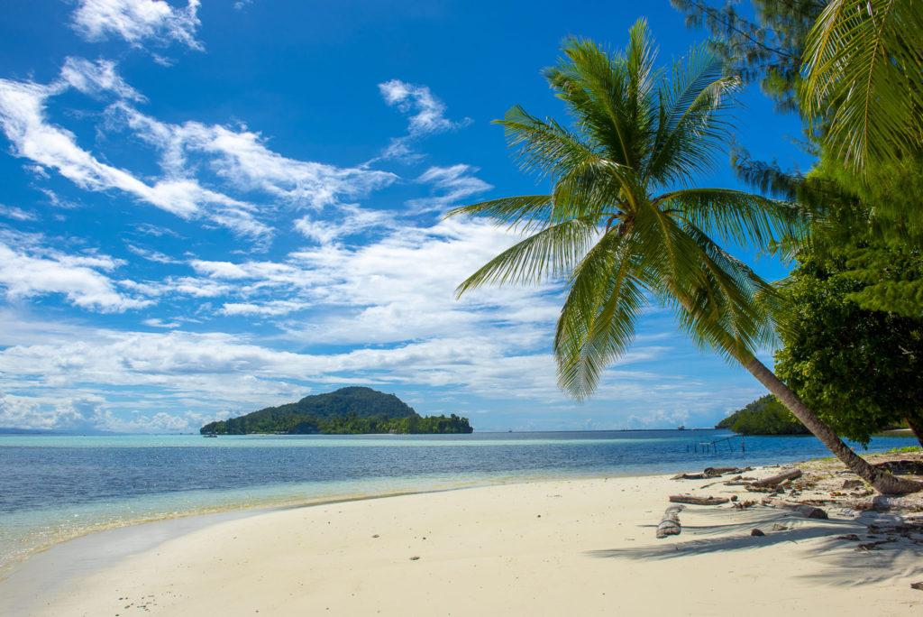 Beachview Raja Ampats – Indo Papua