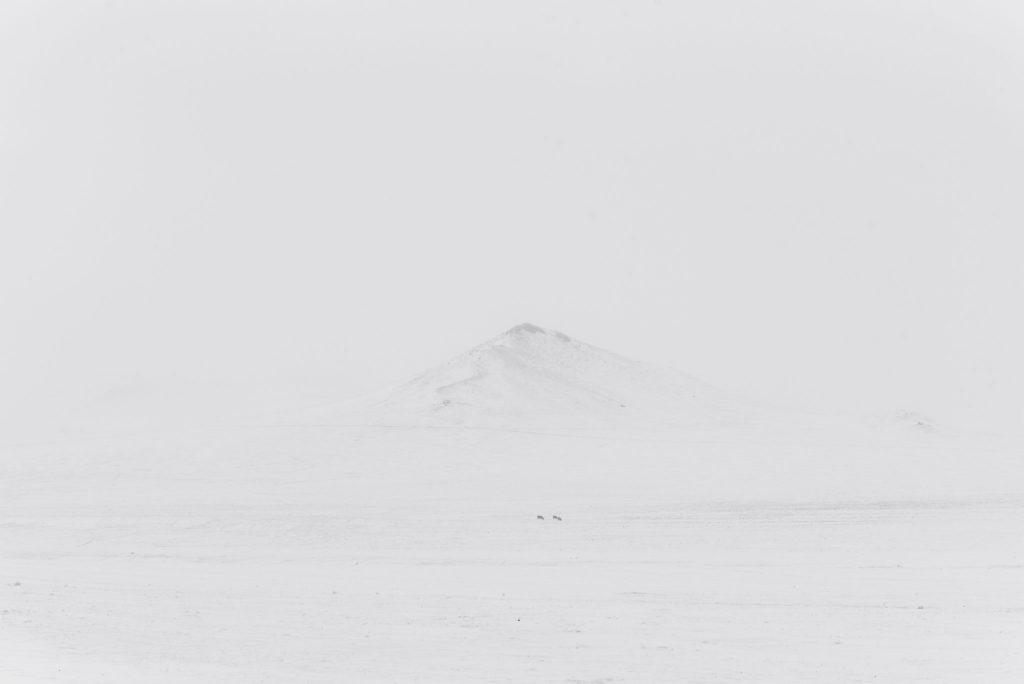 Khustain Nuruu Winter – Mongolia