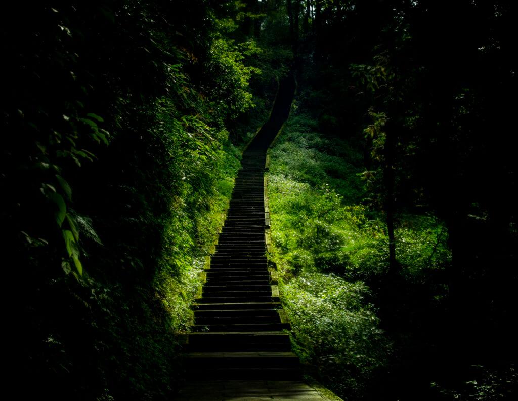 Stairway on Emei Shan -China