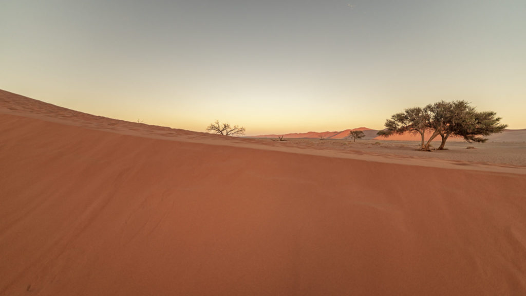 Desertland – Namibia