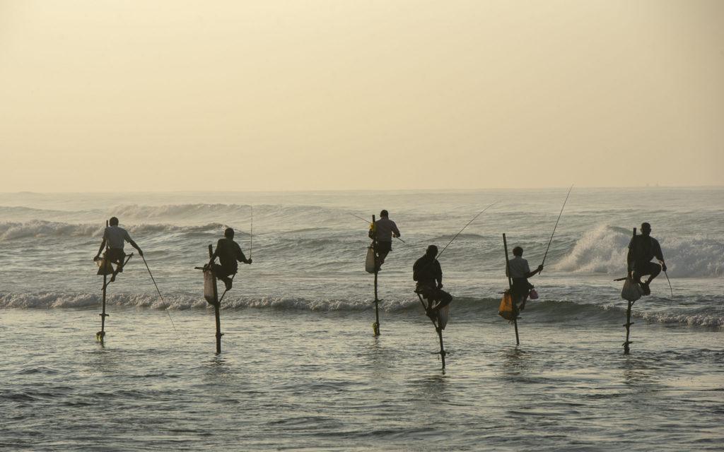 Stilt fishing at sunrise -Sri Lanka