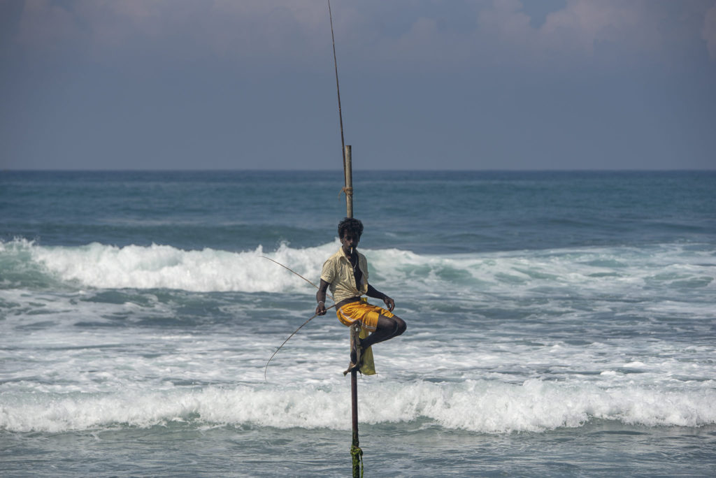 Traditional Stilt fisherman – Sri Lanka