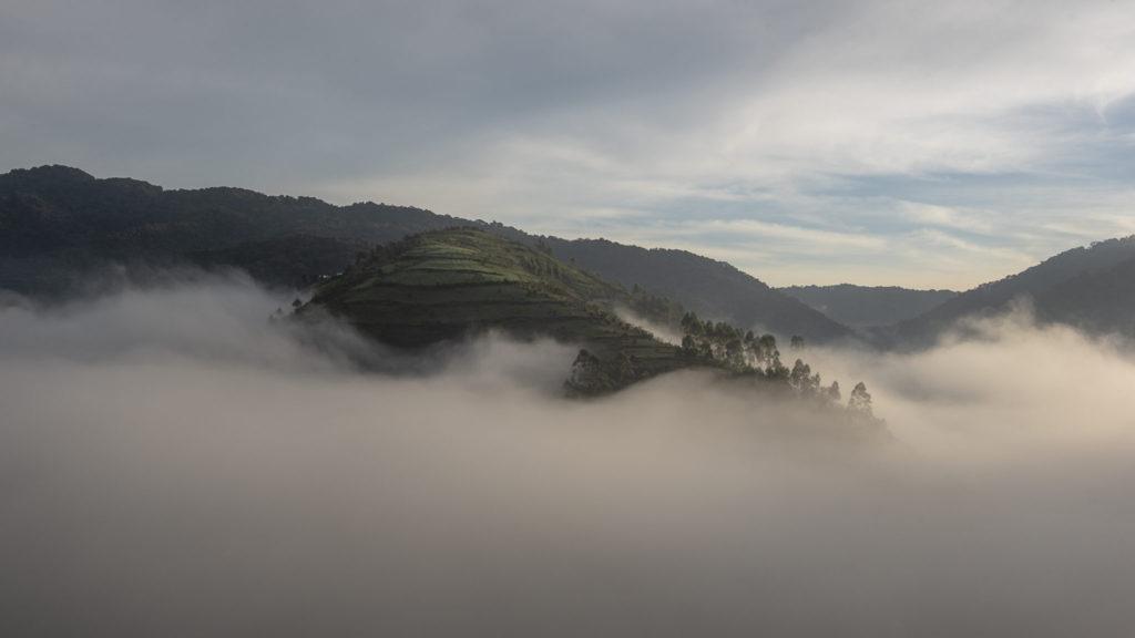 Rising mist – Uganda